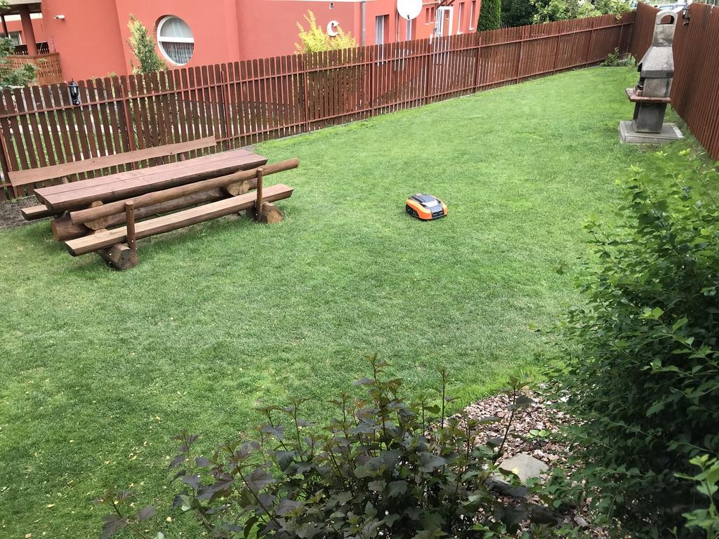 Grădină de vară